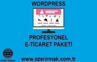 Profesyonel E-Ticaret Paketi-