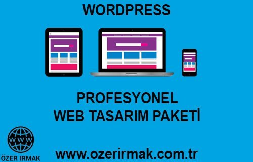 Profesyonel Web Tasarım Paketi
