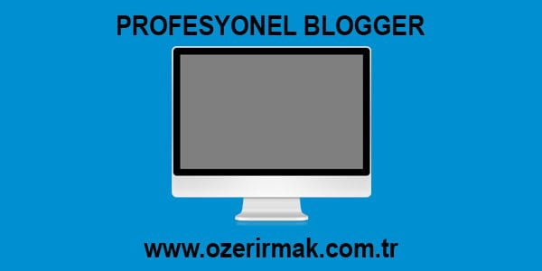 Profesyonel Blogger