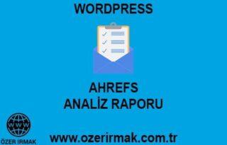 Ahrefs Analiz Raporu Hizmeti