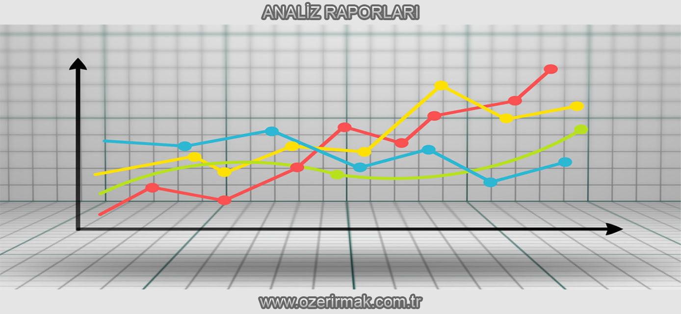 Analiz Raporları