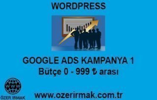 Google ADS Kampanya 1