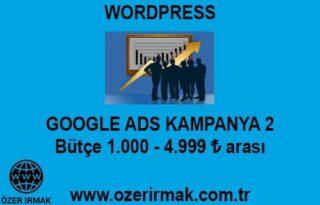 Google ADS Kampanya 2