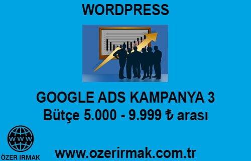 Google ADS Kampanya 3