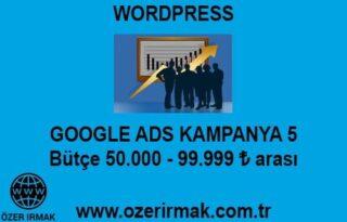 Google ADS Kampanya 5