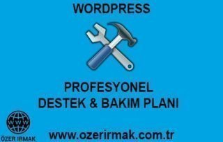 Wordpress Profesyonel Destek Bakım Planı
