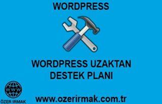 Wordpress Uzaktan Destek Planı