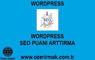 Wordpress SEO Puanı Arttırma Hizmeti