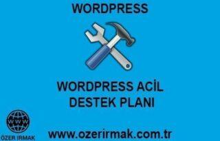 Wordpress Acil Destek Planı